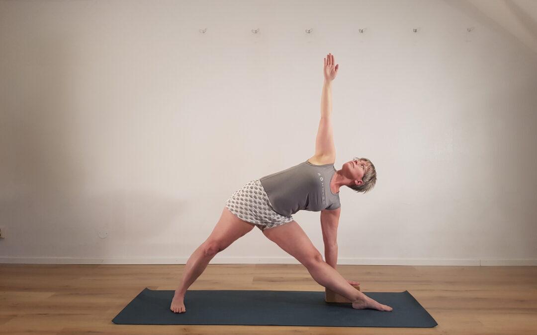 Yoga i Konsthallen